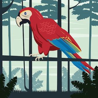 Animale selvatico dell'uccello del pappagallo tropicale nella scena della giungla
