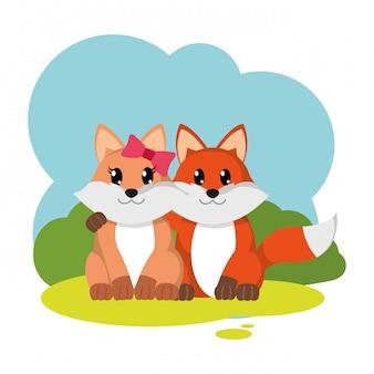 Animale sveglio delle coppie variopinte della volpe nel paesaggio