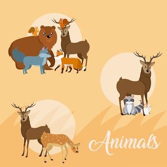 Animali carini icone rotonde cartoni animati