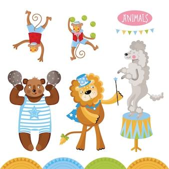 Animali da circo che eseguono raccolta di trucchi