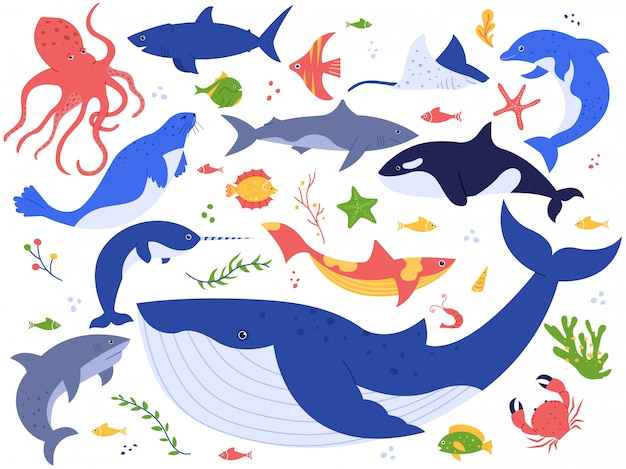 Animali dell'oceano. insieme sveglio dell'illustrazione dei pesci, dell'orca, dello squalo e della balena blu, degli animali marini e delle creature del mare. world pack sottomarino. raccolta di clipart di alghe, alghe e piante acquatiche