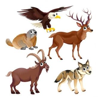 Animali di montagna divertenti cervi aquila groundhog stambecco lupo vettore personaggi dei cartoni animati isolati