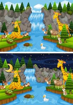 Animali in natura giorno e notte