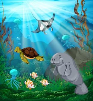 Animali marini che nuotano sotto l'oceano
