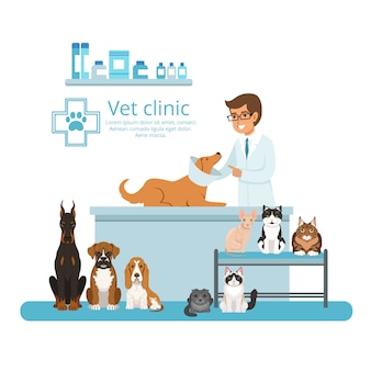 Animali nel gabinetto dell'ospedale veterinario. illustrazione vettoriale