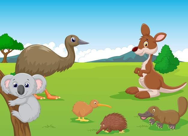 Animali nell'entroterra australiano
