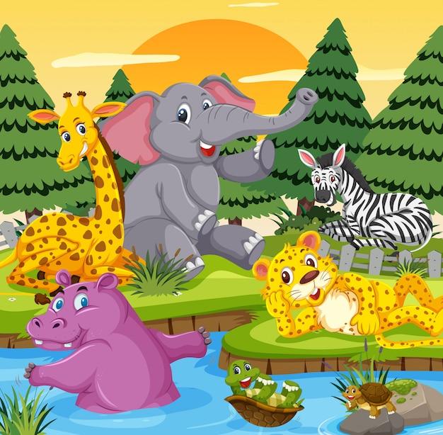 Animali selvaggi nel fiume
