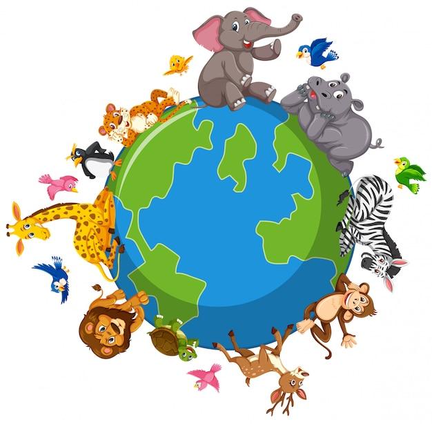 Animali selvaggi sul globo