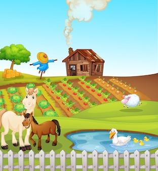 Animali sulla scena della fattoria