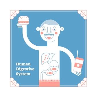 Apparato digerente umano anatomico stilizzato