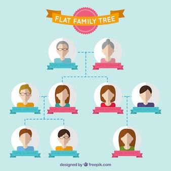 Appartamento family tree personalizzata