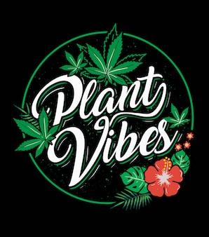 Appassionato di cannabis plant vibes