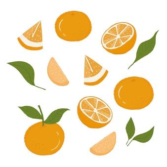 Arance, fette di arance, foglia di arancia, carni di arancia, set di arance