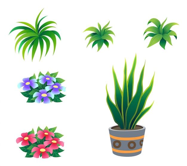 Arbusto dell'illustrazione per il fumetto isolato su fondo bianco