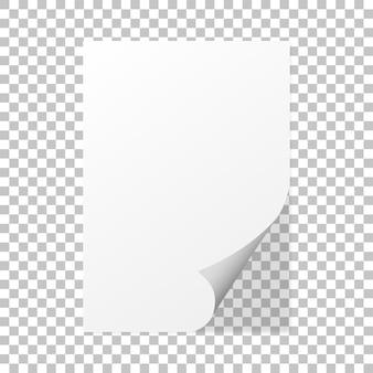 Arricciatura di carta su uno sfondo isolato con ombra