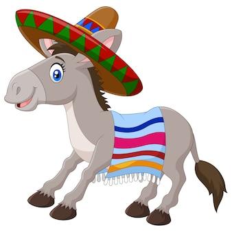 Asino messicano che indossa un sombrero