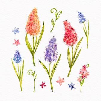 Assortimento di raccolta di fiori primaverili in acquerello