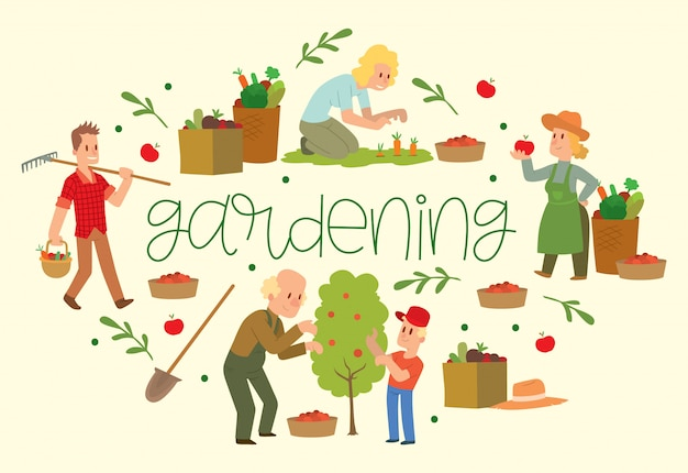 Attrezzature da giardinaggio per terreni come rastrello, pala, benna. raccolta di frutta e verdura contadina raccolta.