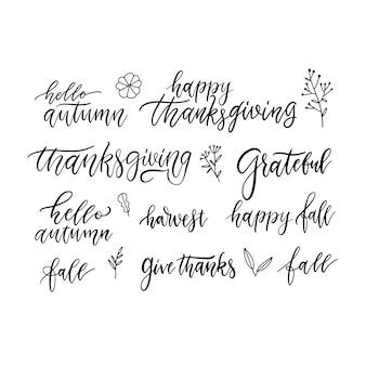 Autunno e ringraziamento scritte a mano pennello scritte e scarabocchi set di icone floreali
