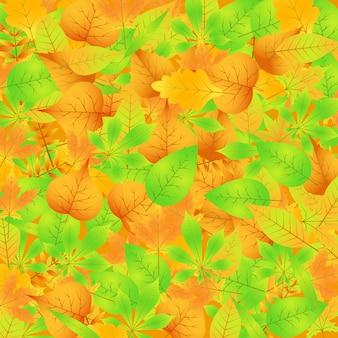 Autunno seamless con foglie