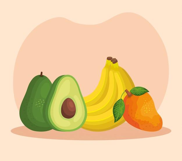 Avocado biologico con banane e frutti di mango