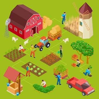 Azienda agricola di frutta e verdura, concetto di giardinaggio isometrico