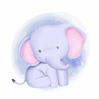 Baby elephant adorabile e curioso