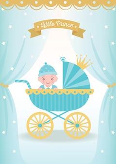 Baby piccolo principe
