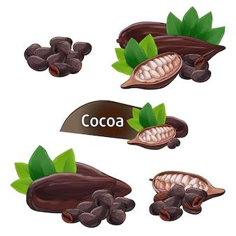 Baccello di cacao in guscio con set di foglie