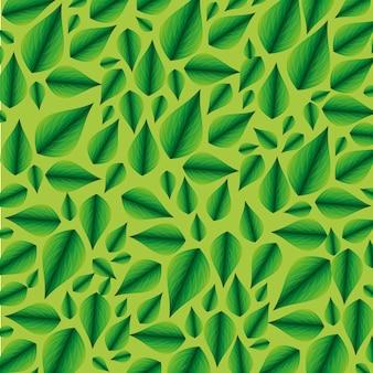 Backround tropicale della pianta delle foglie di ecologia