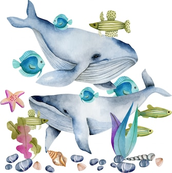 Balene dell'acquerello fra l'illustrazione dei pesci oceanici
