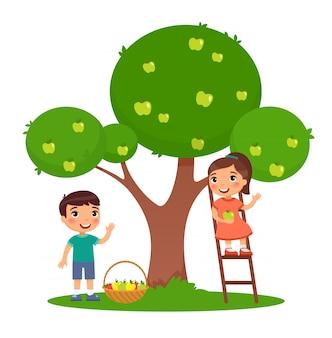 Bambini che selezionano l'illustrazione piana di colore delle mele. ragazzino e ragazza che raccolgono frutti insieme. sorella sulla scala e fratello vicino di melo in giardino. personaggi dei cartoni animati isolati su bianco