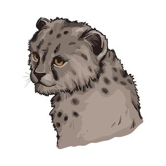 Bambino del ghepardo, ritratto di schizzo isolato animale esotico. illustrazione disegnata a mano.