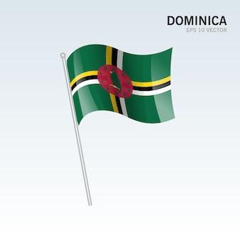 Bandiera sventolante della dominica isolato su sfondo grigio