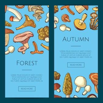 Banner di funghi disegnati a mano