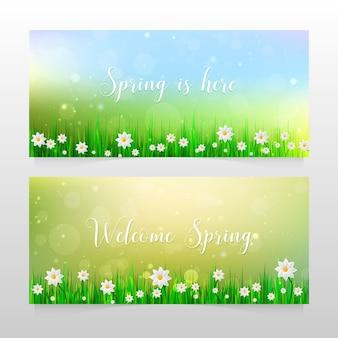 Banner di primavera con erba e fiori bianchi