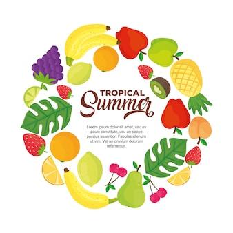 Banner estivo tropicale, con cornice rotonda di frutta fresca