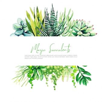 Banner orizzontale con cactus dell'acquerello e piante succulente