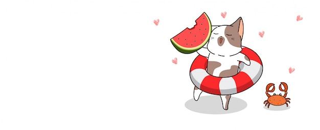Banner saluto simpatico gatto sta andando al mare per il giorno d'estate