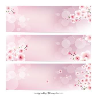 Banner sfocate con fiori di ciliegio decorativi