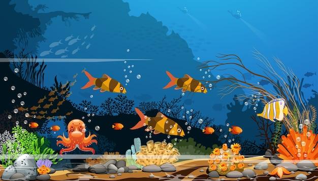 Barriere coralline variopinte con il pesce e le ombre degli alberi sul fondo marino blu con gli operatori subacquei.