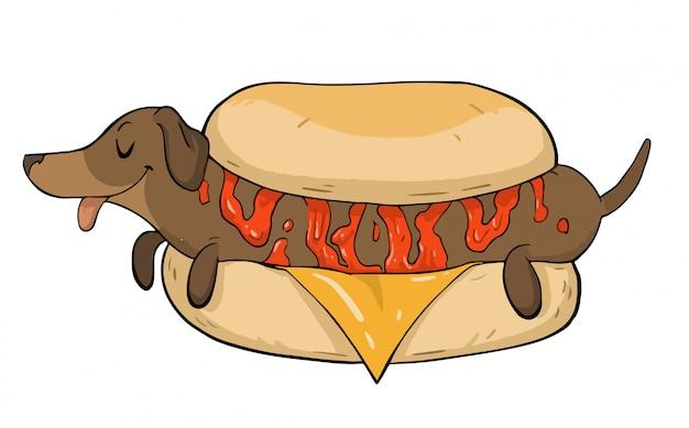 Bassotto come un hot dog
