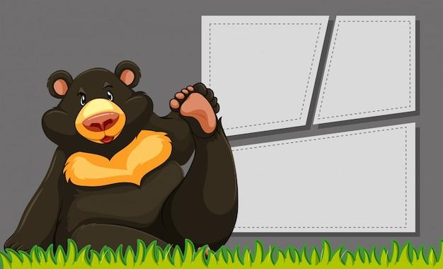 Bear on template vuoto