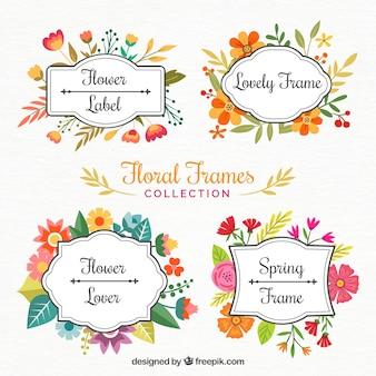 Bei fiori cornici dipinte con acquerelli