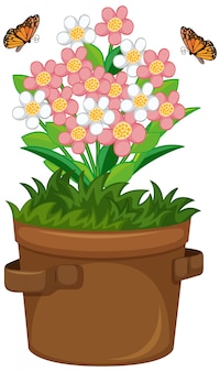 Bei fiori nel giardino su fondo bianco