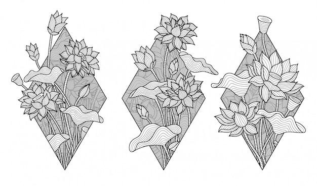 Bel fiore di loto bianco e nero