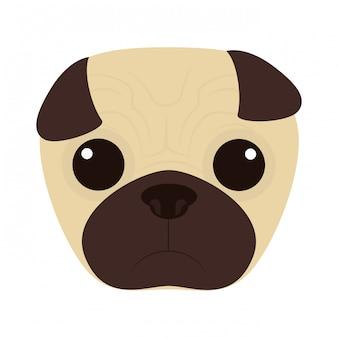 Bel viso di cane