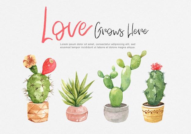 Bella collezione di cactus in acquerello.