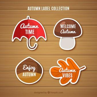 Bella collezione di etichette autunnali con design piatto