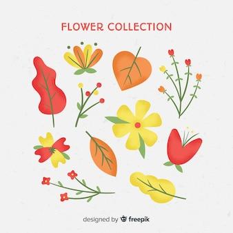 Bella collezione di fiori con design piatto